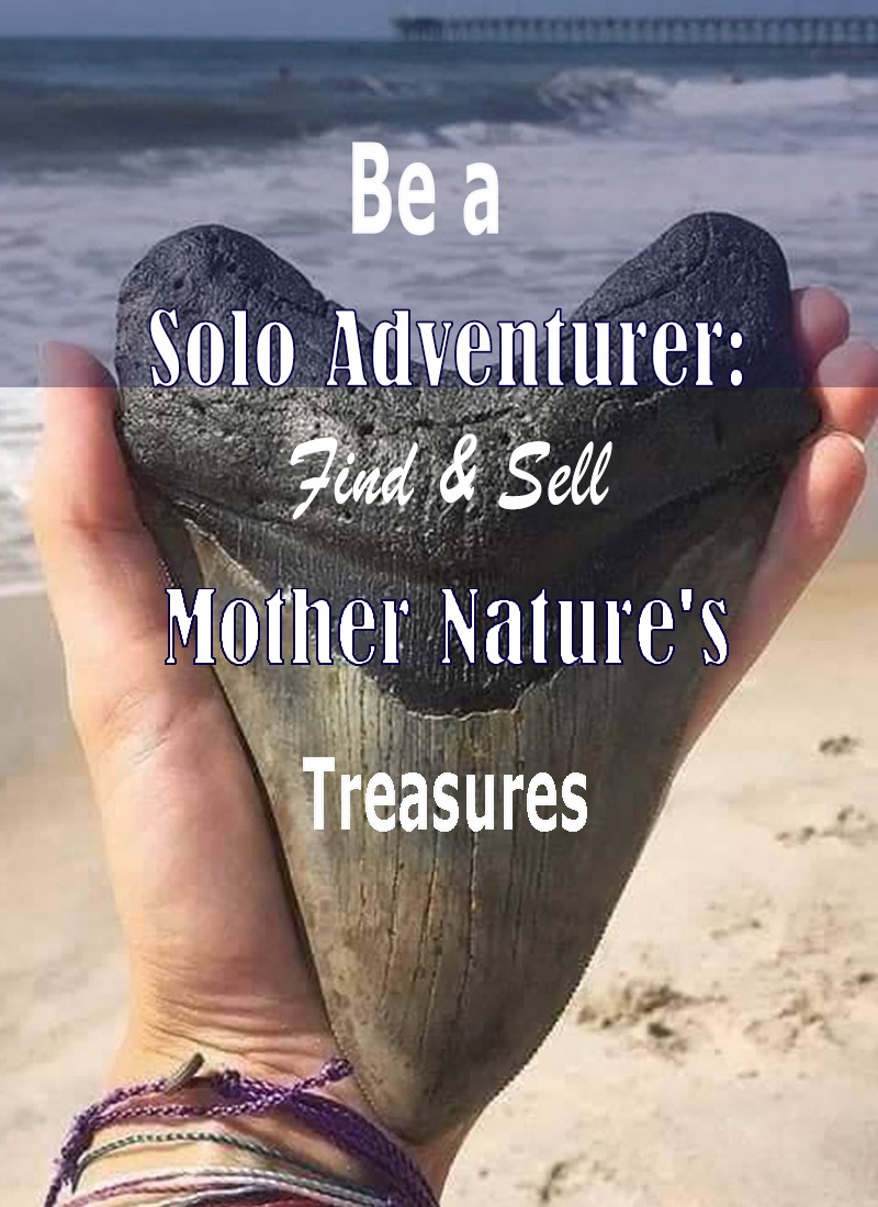 Mother-Nature's-Treasures