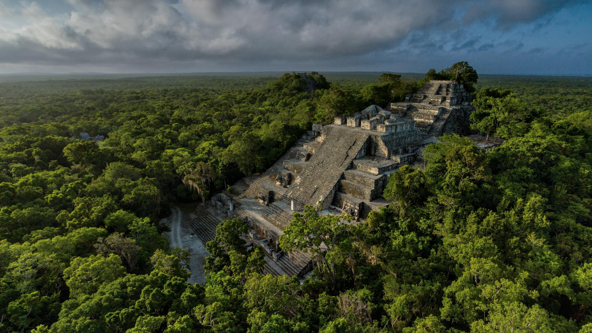 calakmul maya pyramid