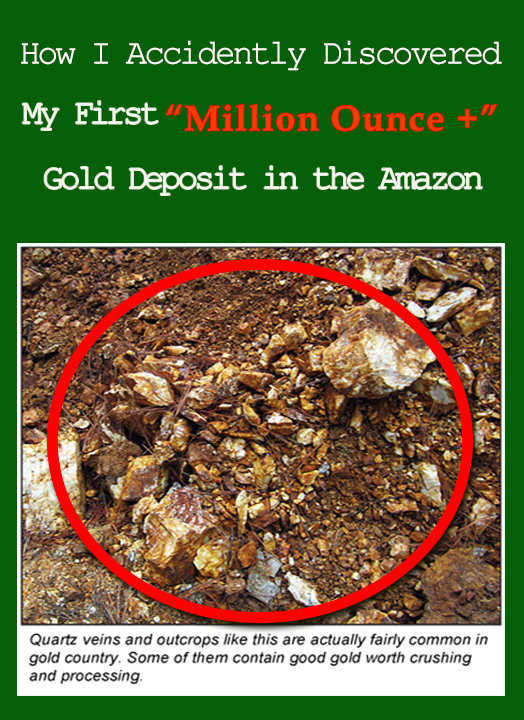 Gold Deposit in the Amazon